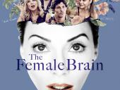 Female Brain poster